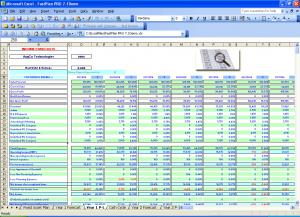 profit and loss templates year p l