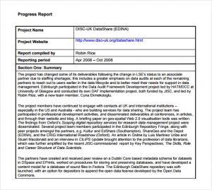 progress report template progress report image