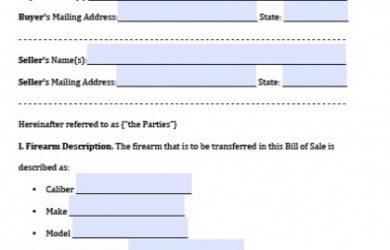 promissory note format georgia firearm bill of sale x