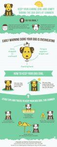 puppy bill of sale summer safety dog days of summer