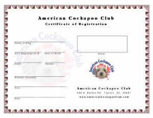 puppy birth certificate certificate cockapoos