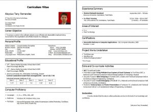 resume for freshers nice resumes for freshers resume format for freshers related to
