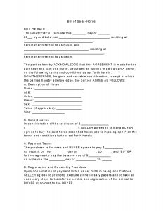 sale contract template horse bill of sale form