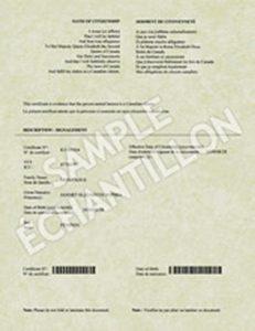 sample birth certificate cit card fev reverse