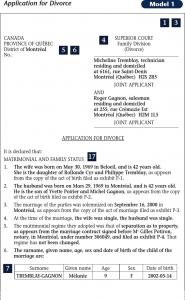 sample divorce paper quebec application for divorce sample