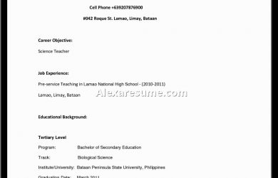 sample resume for high school student resume sample for high school students college format student examples first job