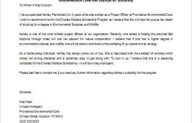 scholarship recommendation letter letter of recommendation for scholarship from employer word doc