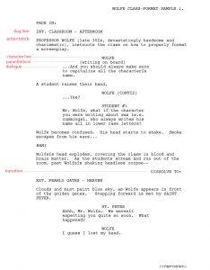 screenplay format template script format sa copy