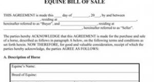 simple bill of sale for car equine bill of sale form thumb x