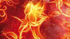 spa business planning heat steam