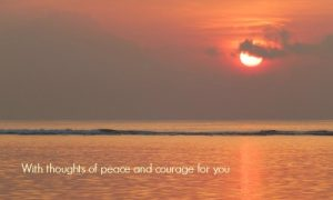 sympathy card images thoughtsofpeace