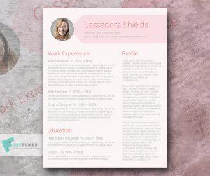 teacher resume template word pink resume template freebie