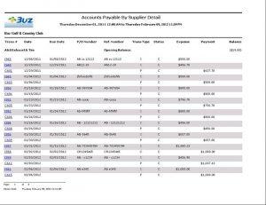 technical reporting format ap report