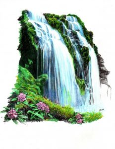tropical flowers drawing tropical waterfall by thorr
