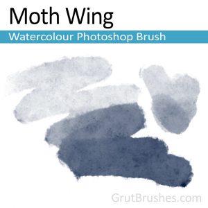 water brush photoshop moth wing watercolour photoshop brush