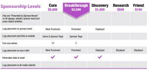 website planning template sponsor levels