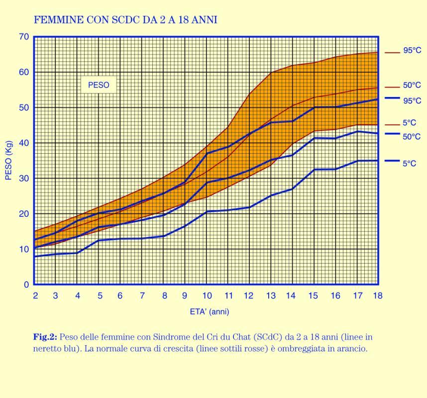 weight loss charts