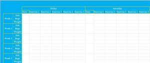 workout log excel dailyweekly and monthly exercise log excel template